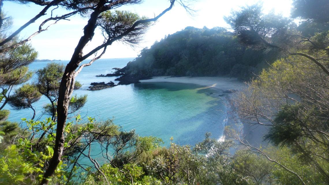 C'est dans les moments délicats où les rencontres se font les plus simples : Du 9 au 26 août (Cape Reinga > Warkworth)